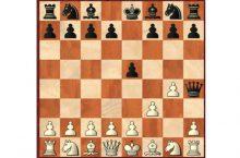 Быстрый мат в шахматах