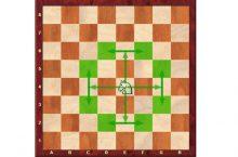 Как ходит конь в шахматах