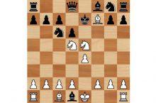 мат легаля в шахматах