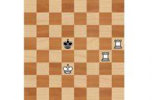 Линейный мат в шахматах