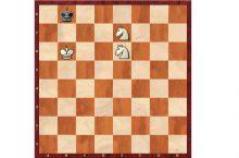 Мат двумя конями в шахматах
