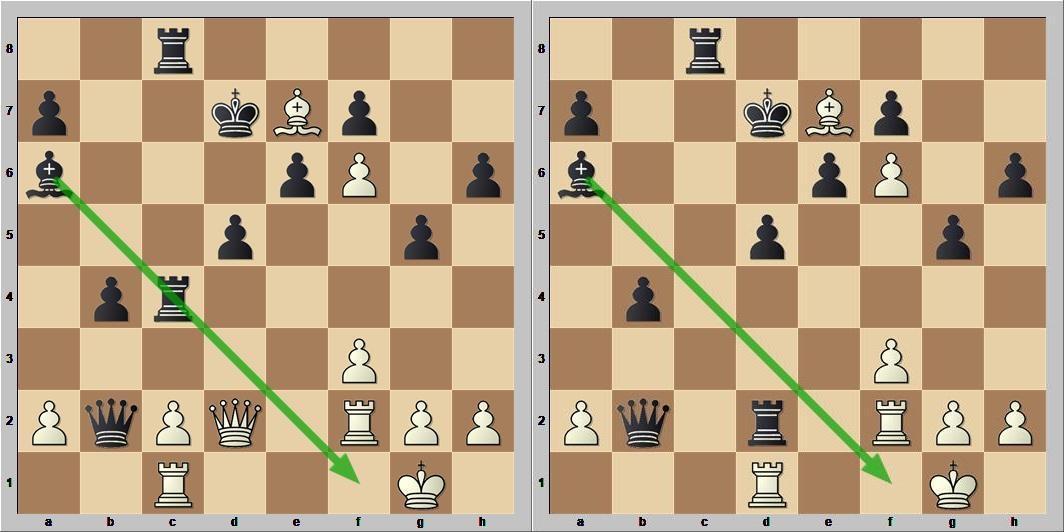 Рентген шахматы