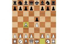 Дебют слона шахматы