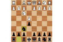 Русская партия шахматы