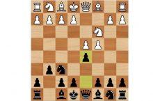 Защита Грюнфельда шахматы