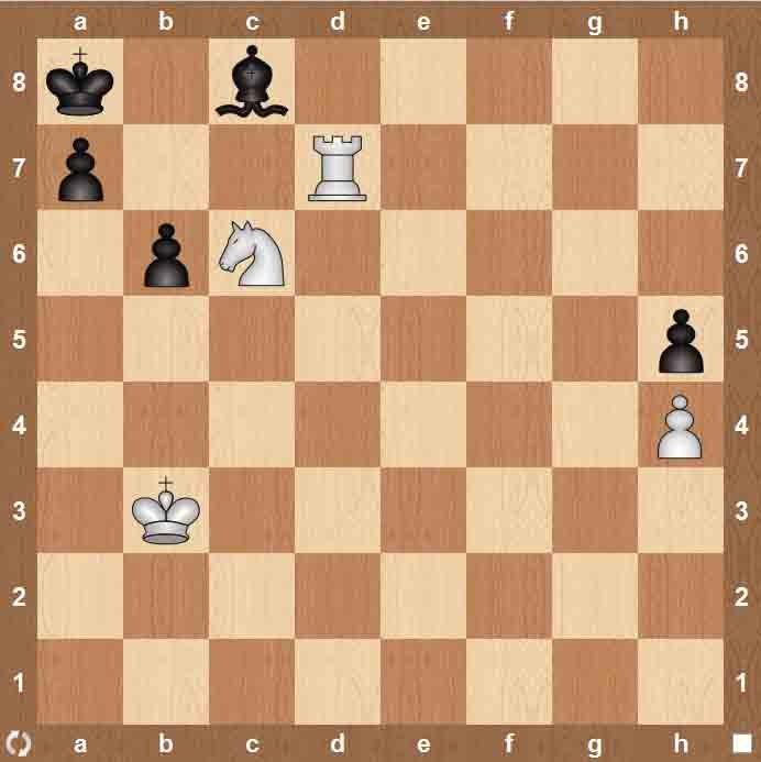 шахматных задач для начинающих