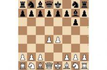 современная защита шахматы