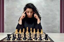 концентрация шахматы