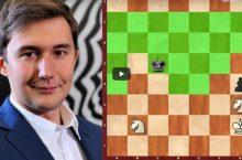 мат двумя конями шахматы
