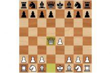 Центральный дебют шахматы