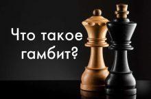 гамбит в шахматах что такое