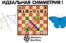 Уникальный мат в шахматной партии