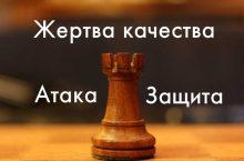 жертва качества шахматы