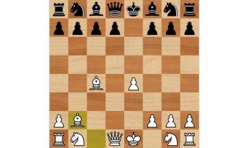 Северный гамбит шахматы