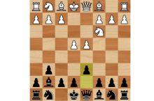 Защита Пирца-Уфимцева шахматы