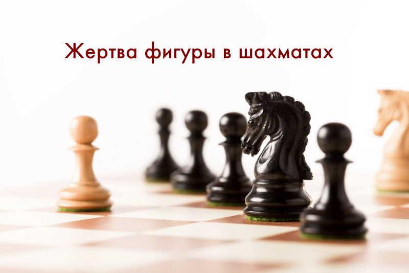 Жертва фигуры в шахматах