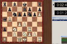 конь короля спас шахматы