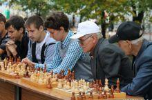 Категории и стили шахматистов
