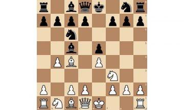 гамбит эванса шахматы