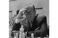 ласло сабо шахматист