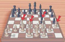 Самоучитель шахматы