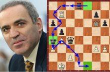 каспаров топалов шахматы