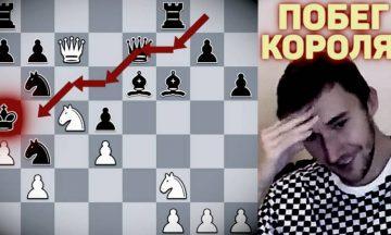 карякин король шахматы